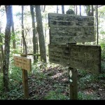 After a steep and unending incline, we reached the Appalachian Trail and this trail marker. Hang a left here to head toward Shuckstack (toward Fontana Dam).