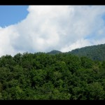 Looking back up at the Shuckstack fire tower from Eagle Creek.